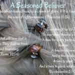 A Seasoned Believer