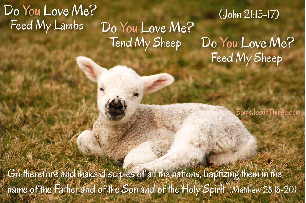 Do You Love Me? Feed My Sheep.