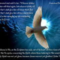 Holy Spirit is the Living Holy Water